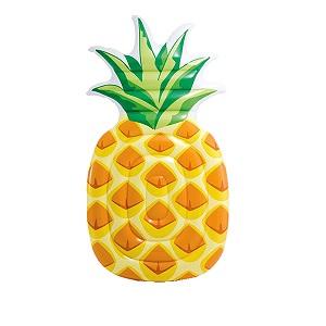شناور روی آب طرح آناناس