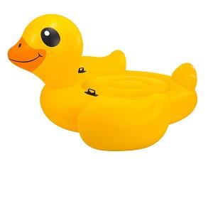 شناور بادی اردک بزرگ