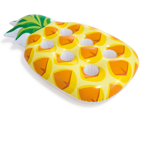 جا لیوانی روی آب آناناس