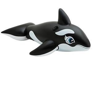 شناور بادی نهنگ اینتکس